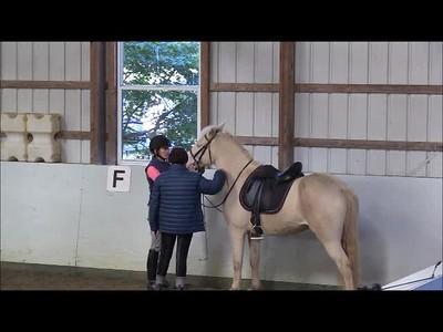 TSRC 2018-10-18 Wildfire Farm Video
