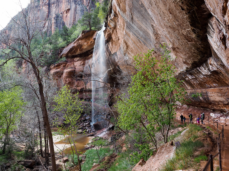 Emerald Pools at Zion National Park
