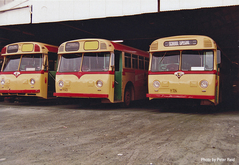 LtoR m/o 724 Leyland Worldmaster/Freighter (7/58) (Ex MTT Adelaide 963), m/o 643 Leyland Worldmaster/Freighter (11/57) (Ex MTT Adelaide 843), m/o 726 Leyland Worldmaster/Freighter (8/58) (Ex MTT Adelaide 947) Photo taken at Northmead Depot in 1983. (Image from the Peter Reid Collection)
