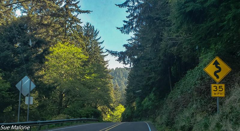 05-06-2019 Oregon Coast Traveling-5.jpg