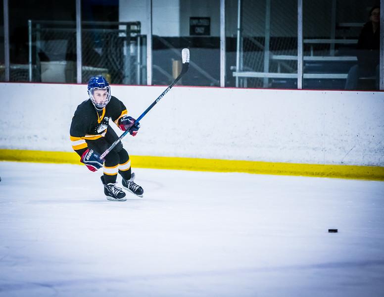 Bruins2-256.jpg