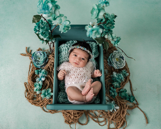2019 Newborn/Children sessions