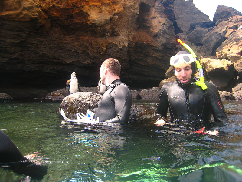 Diving in the Galapagos (57 of 392)