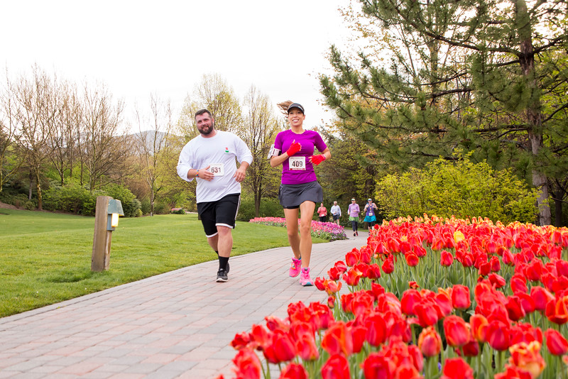 TulipFestHalfMarathon_Runners_Gardens_2015_IMG_5250.jpg