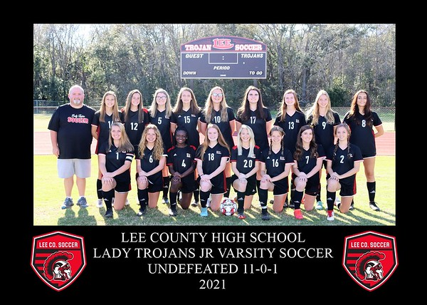 Lee County Plaques 2021