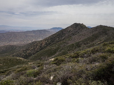 Pine Mountain along the Desert Divide    4.9.17