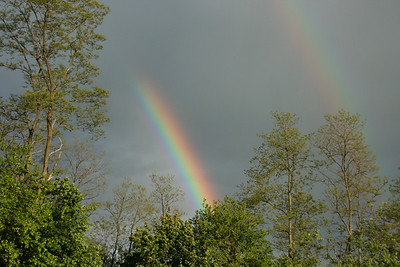Rainbow 5-22-2008