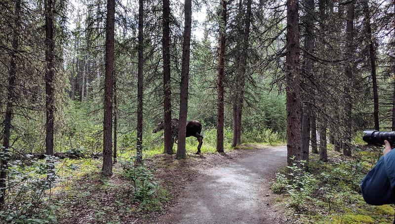 2016 Alaska - Susan Nexus 6P - 243 - 20160724.jpg