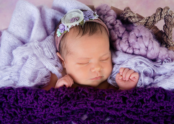 Kaelyn (2019 Newborn)