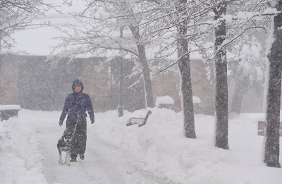 Photos: Storm Drops 8 to 10 Inches of Snow in Boulder County Over Night
