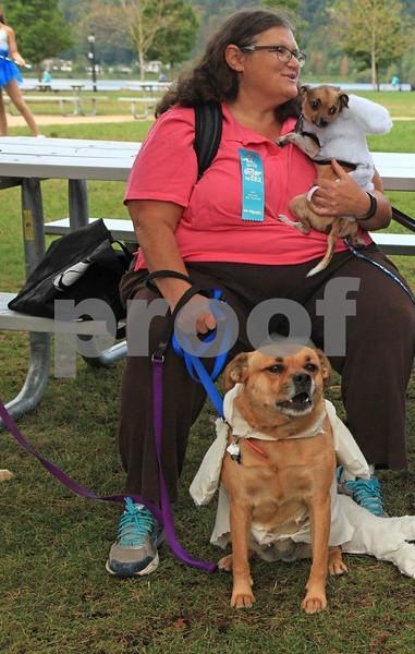 Two dog gal 1250c.jpg
