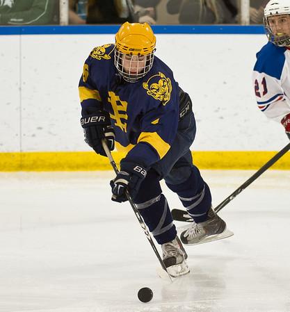 Grosse Pointe South V Liggett, Hockey, 12-16-11