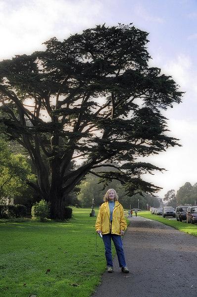 Aunt Carole in Golden Gate Park