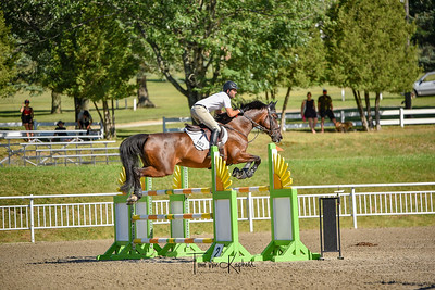 Jumpers 1.30m