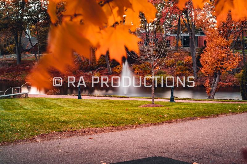 10-31-18_RAC_Fall-Scenic-Folliage-Long-Exposure-22.jpg