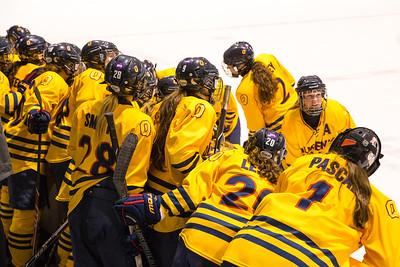 Women's Hockey - Queen's at Laurier 20150219