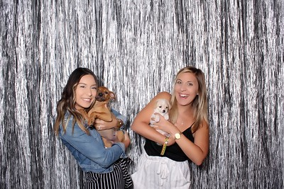 Paws to Party 2019
