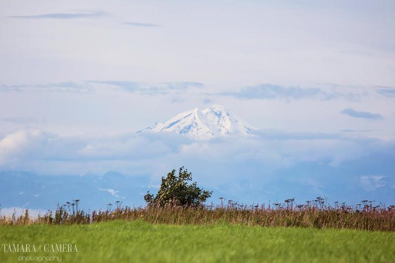 Volcano-2-2.jpg