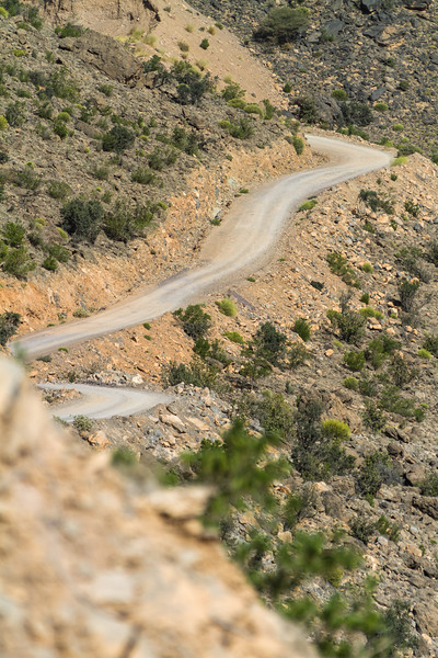 Mountain road in national park - Oman