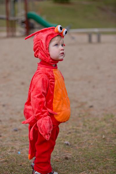 Wyatt's First Halloween 103.jpg