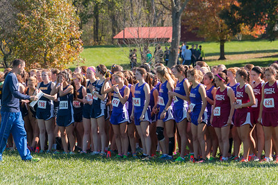 NCS Cross Country 2014