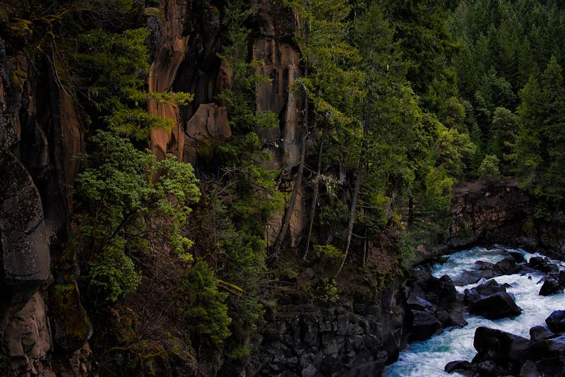 20160326_Rogue-River_Prospect-Bridge_KateThomasKeown_DSC4458-HDR.jpg