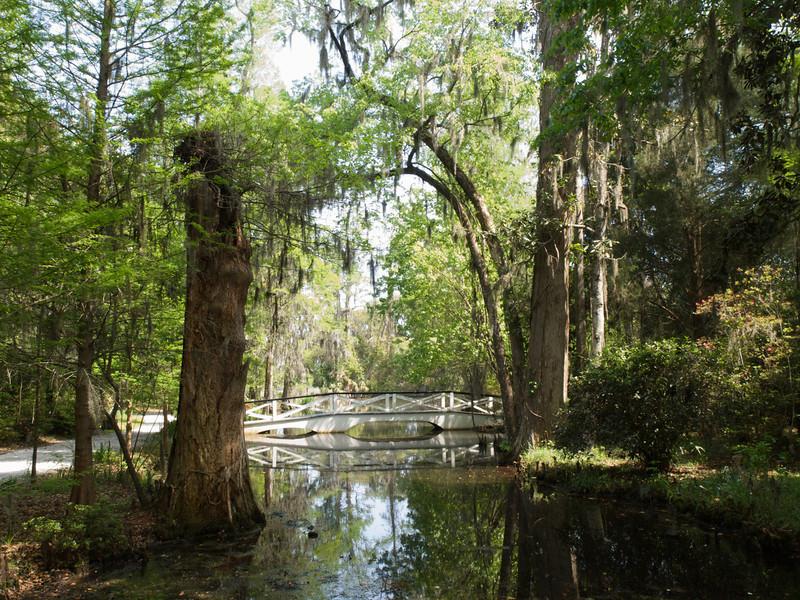 Magnolia Plantation Gardens