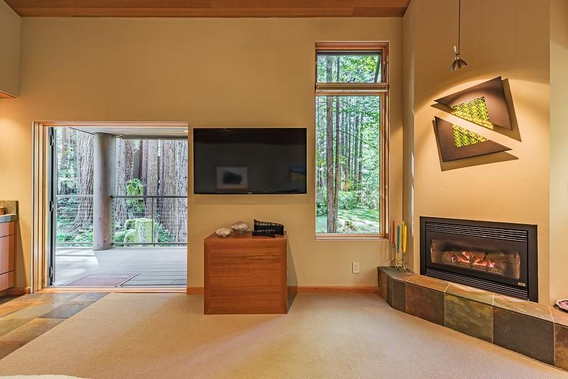 Fireplace & Media Area