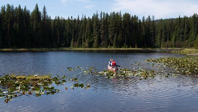 Castlegar Champion Lakes