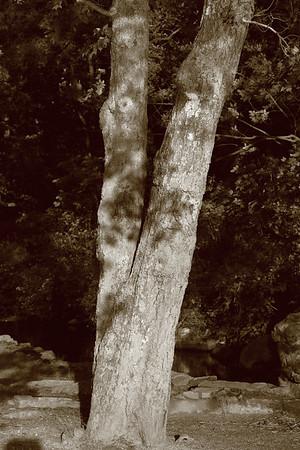 Grist Mill - B&W - 05-31-09