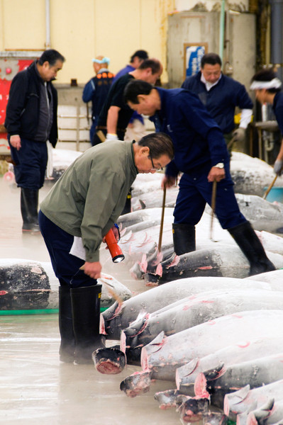 Japan_2010_NAT8678.jpg