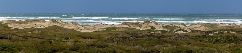 Sanddünen vor der 90 Mile Beach