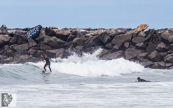 OB surfers come together