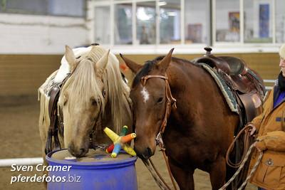 13.10.2011 - Trailnight 10/2011 - MP Westernhorses