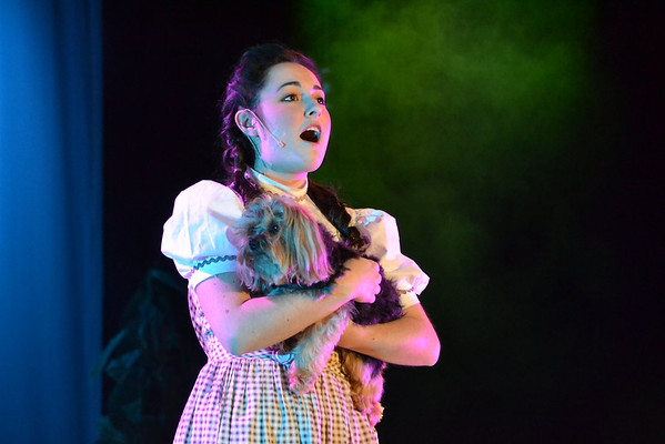 The Wizard of Oz 2013