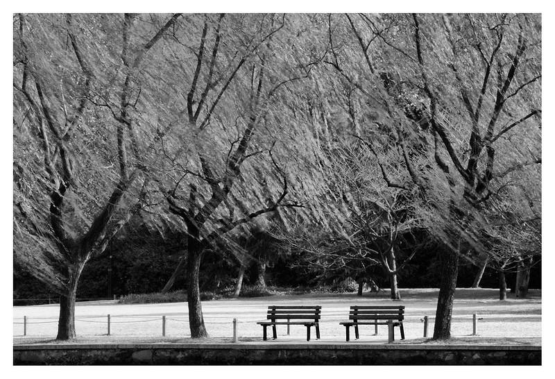 Hangzhou2011_0010b.jpg