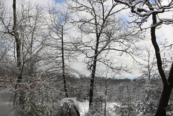 snow - Turtle pond parkway 2-25-13