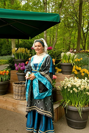 Holland in Bloom Shearings Coach Tours