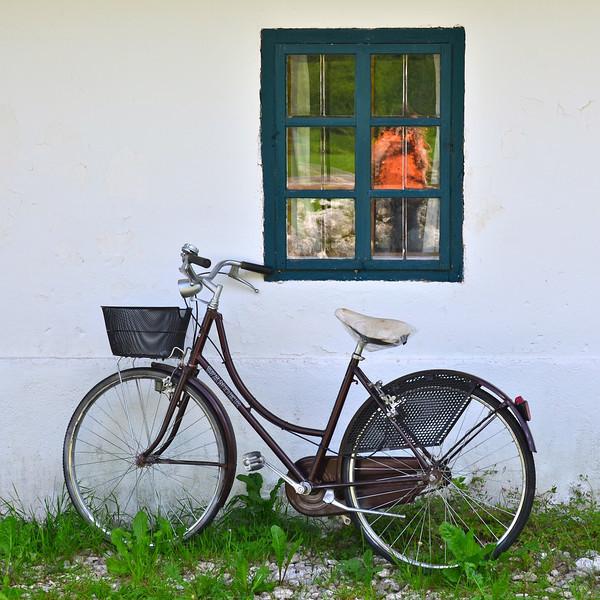 Window with Bicycle. Stara Fu