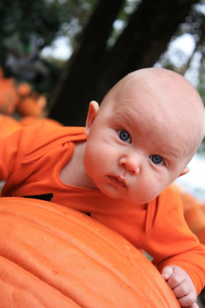 Brett in the Pumpkin Patch