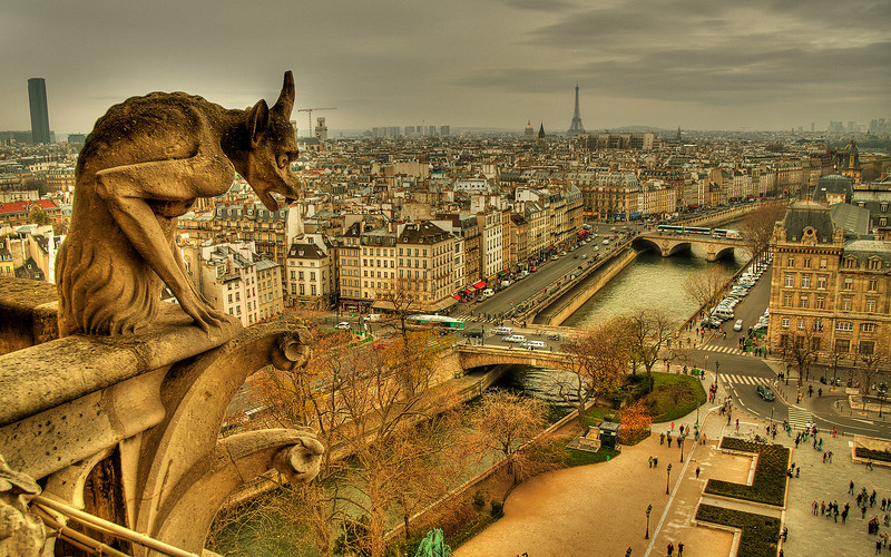 Watching Paris: Notre Dame Cathedral (HDR Image)