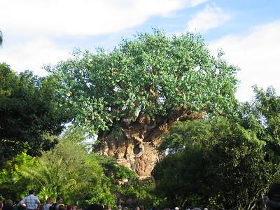 Disney 10/16/2007