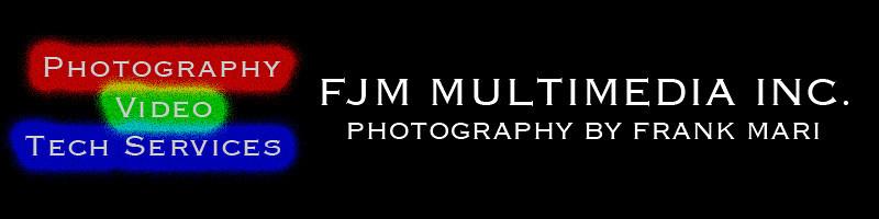 FJM logo design 1 20111022 banner.jpg