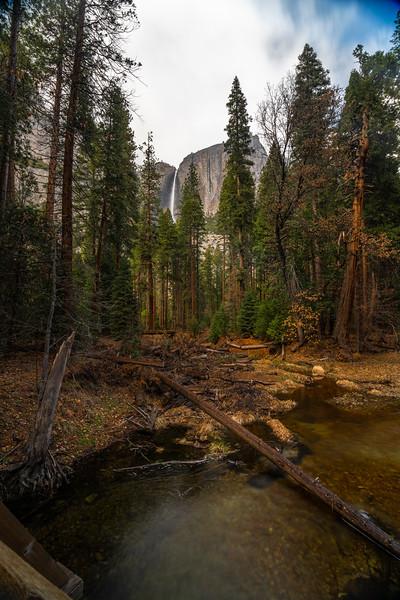 20200307_Yosemite_EEG9758.jpg