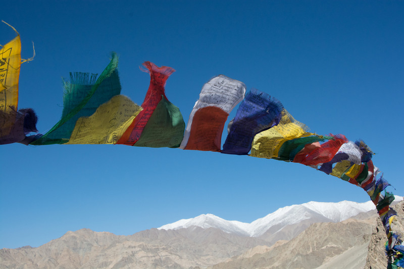 Ladakh Thiksey Gustor 2013-3218.jpg