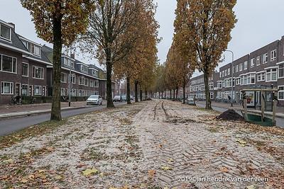 Groningen Aktiviteiten Oranjewijk Aaanleg bijenlint 2019