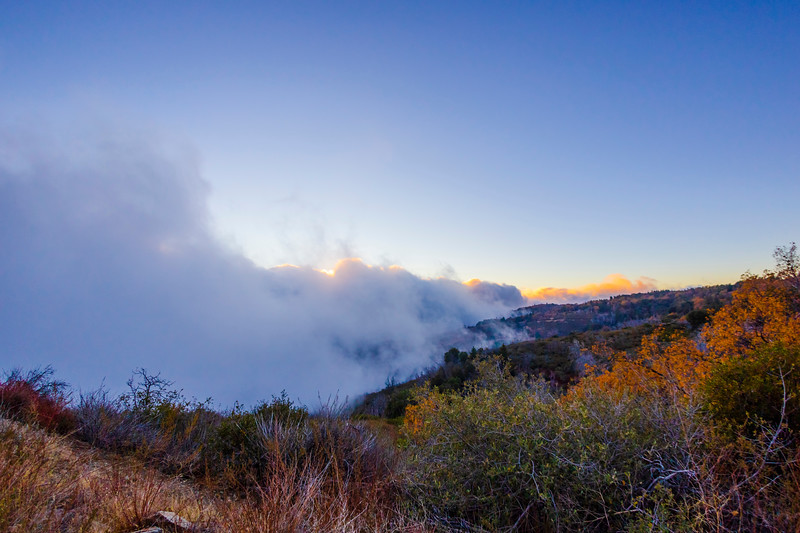 Encroaching Fog [1/3]