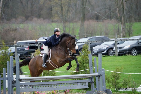 Equestrian Events and Portraits