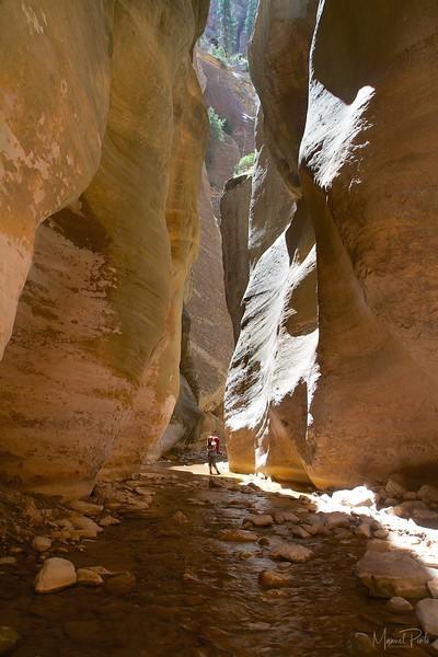 Virgin Narrows at Zion National Park, Utah