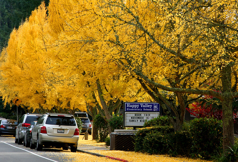 happy valley school autumn.jpg